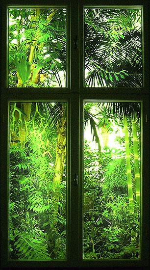 Karolina Kowalska, aus der Serie Windows for wintertime, 2004 , Leuchtkasten, gerahmt in altem Fensterrahmen, 180 x 100 cm, Edition 3 + 1AP