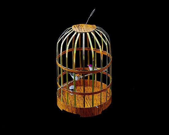 In Case it Rains in Heaven – Birdcage2009Lambda print40 x 50 cm (Edition of 10)60 x 76 cm (Edition of 5)