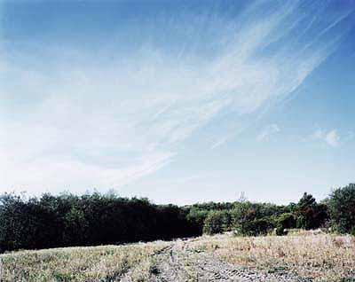 Landscape 2002