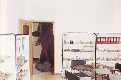 Brown Bear, Bubenreuth, Germany, 2002