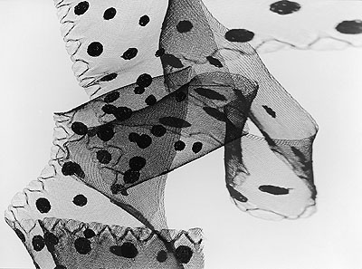 Hans Finsler: Crin brodé noir, 1941–1943 © Stiftung Moritzburg Halle/Saale