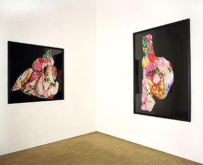 Raumansicht: Judith Huemer links: mexicoish #5, 2006 C-Print 120 x 120 cm 2/3 rechts: mexicoish #3, 2006 C-Print 180 x 120 cm 2/3