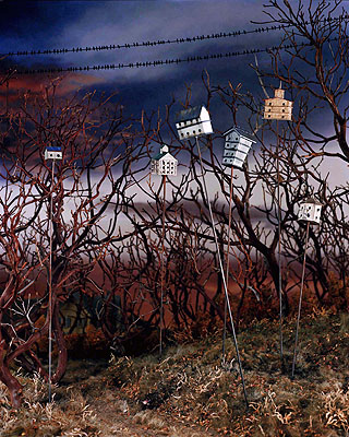 Lori Nix Birdhouses, 2003 from the series