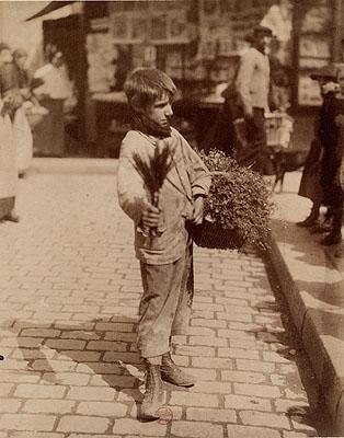 Herb salesman, Paris, 1898 © BnF, département des Estampes et de la photographie
