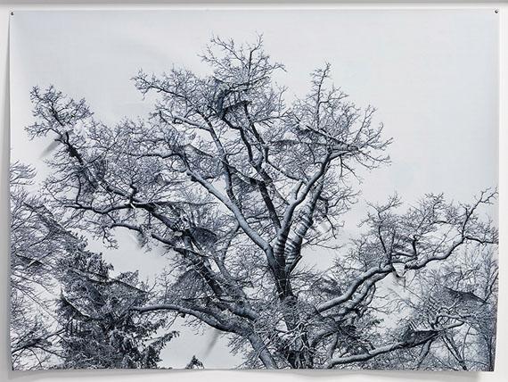 'Winter', Paper, unique © Hubertus Hamm
