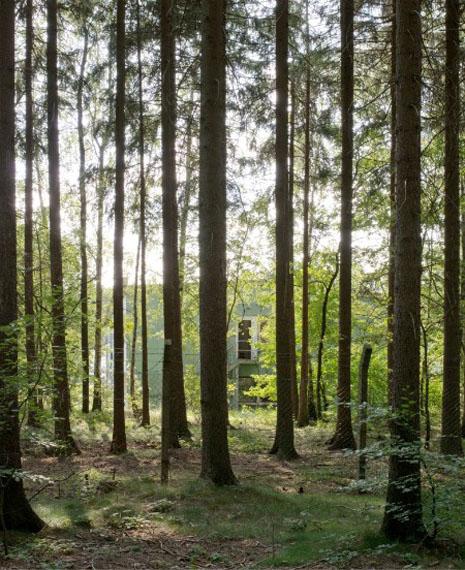 © Eva Leitolf, PfE1150-DE-080911. Ehema- liger Luftabwehrstützpunkt, Seeligstädter Wald, Deutschland 2014 / Abandoned Anti- Aircraft Base, Seeligstädter Wald, Germany 2014. VG Bild-Kunst Bonn, 2014