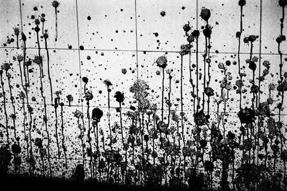 © Paula Luttringer, No. 6, aus der Serie El Matadero (Schlachthaus), 1995
