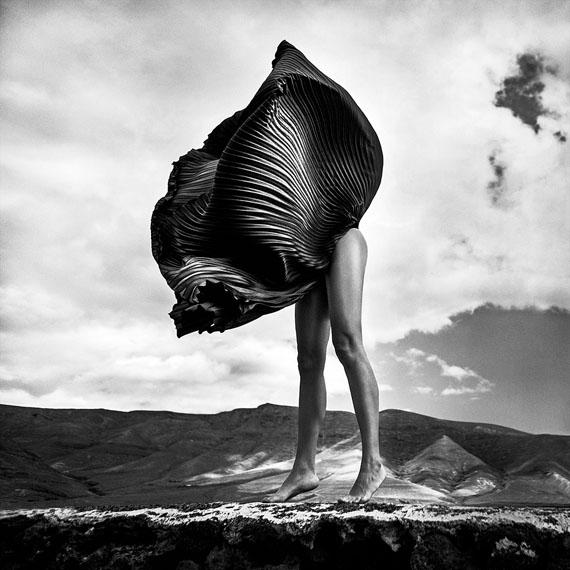 Szymon Brodziak: The Flower, Lanzarote, Spain 2014© Szymon Brodziak