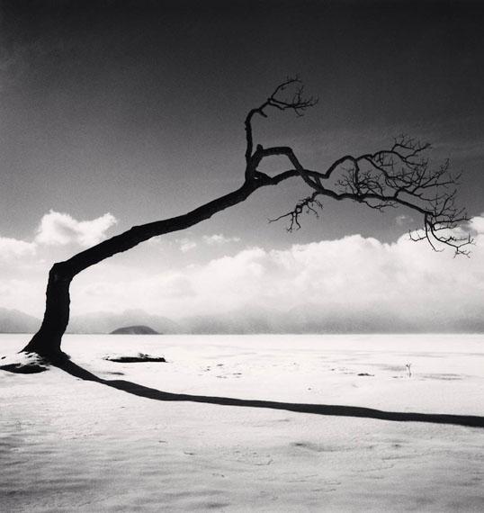 Michael Kenna: Kussharo Lake Tree, Study 10, Kotan, Hokkaido, Japan, 2005