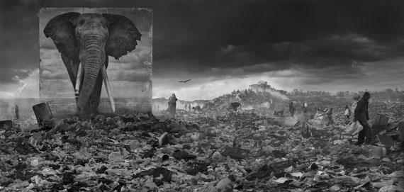 "Nick Brandt""Wasteland with elephant"" | Inherit the Dust 2015© Nick Brandt"