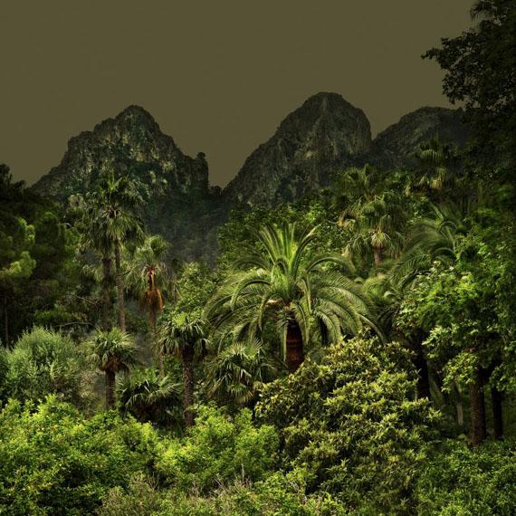 Olivia LAVERGNE, Jungles 2, Tirage Fine Art, 100 x 100 cm, Ed.5