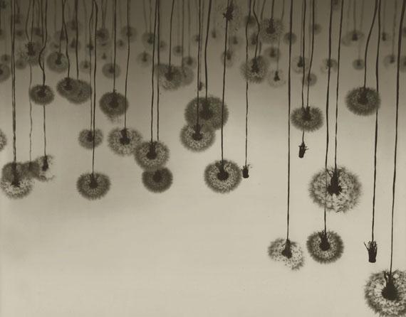 Ryuji Taira: Cadence, II, 2014