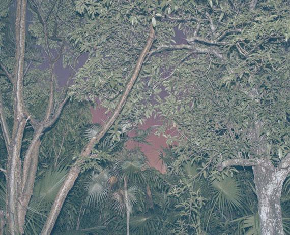 Jungle Check, 2017 ©  Cristina de Middel & Kalev Erickson