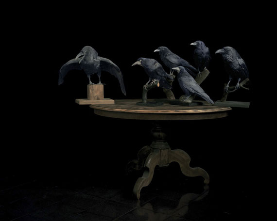 """Brigitte Lustenberger: Birds, 2012, aus der Arbeit """"This Sense of Wonder"""""""