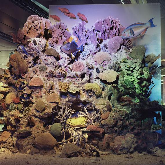 Roselyne Titaud: Korallen – o. T., 2010 © Roselyne Titaud, 2019