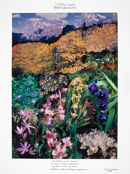 Peter Hutchinson, Conflicting Seasons: Alliterative Landscape Series, 2002, Collection of the Artist. Photograph by Clements Photography and Design, Boston.