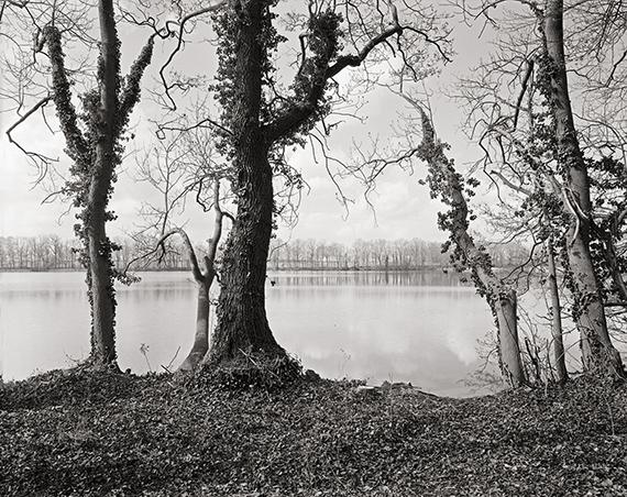Lorenz Kienzle, Ufer des Ruppiner Sees, aus der Serie Gutspark Karwe 2019