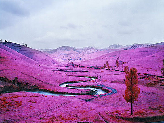 Richard Mosse,
