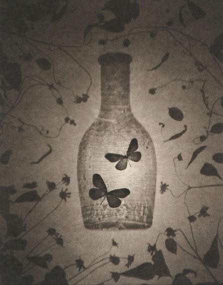 Ryuji Taira: aus der Serie Fluffy Platinum, two butterflies