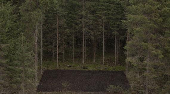 Antti Laitinen, Forest Square II (2013), © Antti Laitinen