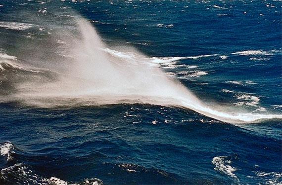 Martin Mlecko: Süd-Atlantik, 2002