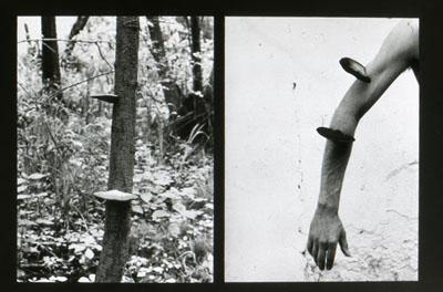 """Lothar Baumgarten """"Binary Opposition"""", 1970"""