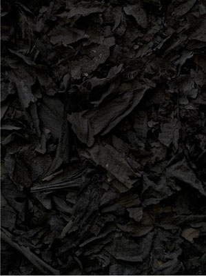 Redox #18, 2010, C-print,  89 x 69 cm, Ed. 3+1