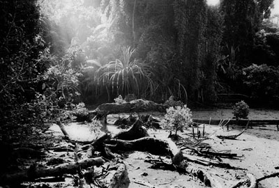 Andreas Deffner, ANDAMAN # 27, Print auf Museum SilverGloss White Paper, 80 x 120 cm