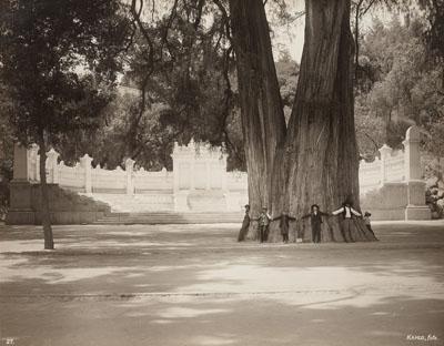 Lot 13, Guillermo (Wilhelm) Kahlo, Recuerdo de México y Chapultepec, Portfolio with 40 vintage gelatin silver prints. , Each ca. 26,5 x 34,2 cm, Estimate € 20 000 – 25 000,-