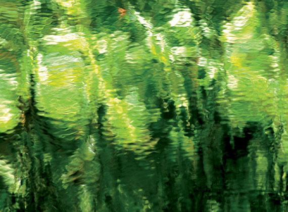 Corinna Rosteck, greenlight, 2011, Chromira pearl auf Aludibond, 1/3, 90 x 130 cm